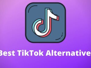 5 Best Alternatives To TikTok In 2020-2021